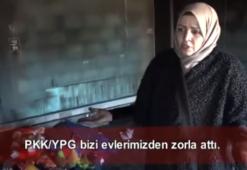 Rasulaynlılar YPG/PKK zulmünü anlattı