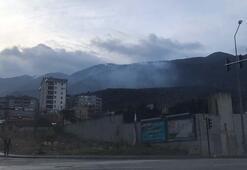 Son dakika Uludağda orman yangını Ekipler yangına müdahale ediyor