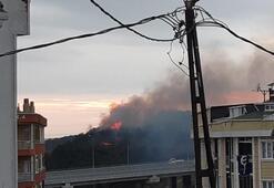 Arnavutköyde orman yangını