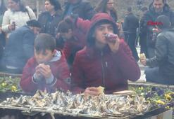 Başkentte Balık Festivalinde 2 ton hamsi ikram edildi