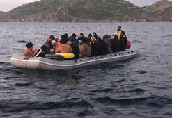 Bodrum açıklarında 31 kaçak göçmen yakalandı