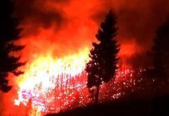 Son dakika | Trabzonda korkutan örtü yangınları Kriz masası oluşturuldu...