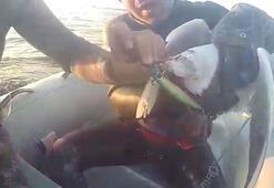 Gagasına olta takılan martıyı dalgıçlar böyle kurtardı