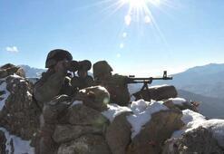 Terör örgütü PKK'da çözülme sürüyor 5 terörist daha teslim oldu