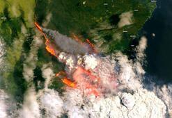 Avustralyadaki yangınlarda 200den fazla ev kül oldu, en az 12 kişi öldü