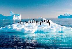 Deniz Kuvvetleri Deniz Hukuk Müşaviri Şenay Kaya: İki kutupta da hakkımız var