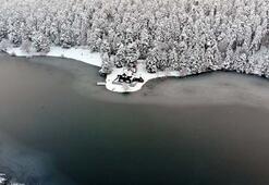 Gölcük Tabiat Parkı buz tuttu