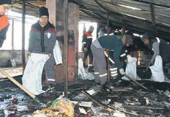 Belediye ekipleri yangının izini sildi