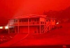 Avustralyadaki yangının nedeni ne Bilanço giderek ağırlaşıyor