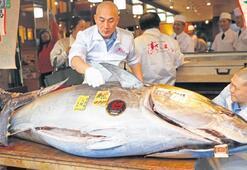 1.8 milyon dolara satılan balık