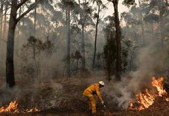 Son dakika: Avustralya yangını devam ediyor... Avustralyadaki yangının nedeni ne İşte son durum