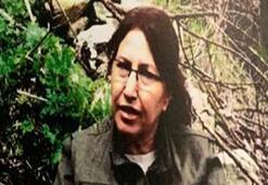 Son dakika PKK yöneticisi Esme Erat ve şoförü öldürüldü
