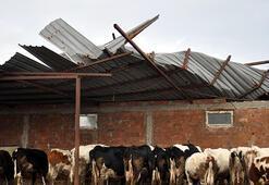 Malkarada şiddetli rüzgar çatıları uçurdu
