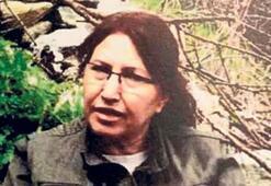 PKK'ya bir darbe daha: PAJK'ın yöneticisi  Kandil'de vuruldu