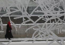 Kars adeta dondu Eksi 19ü gördüler
