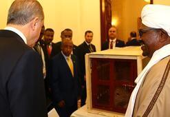 Cumhurbaşkanı Erdoğana hediye edilen aslanları bir de şimdi görün