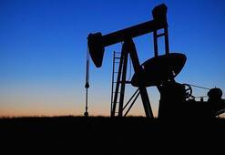 ABD petrol sondaj kule sayısı 11 adet düştü