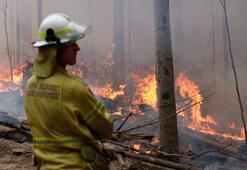 Australya yangınları: Morrisondan hatalar yaptım itirafı
