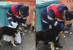 Temizlik işçisi yağmurdan ıslanan köpeği kuruladı
