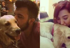 Eski sevgililerin paylaşılamayan köpek davasında karar