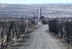 Uzmanlar: Avustralya yangınları yeni normal olabilir