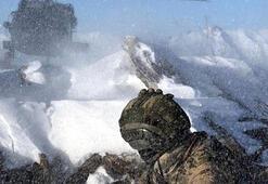 Bitliste PKKlıların kullandığı 11 sığınak bulundu