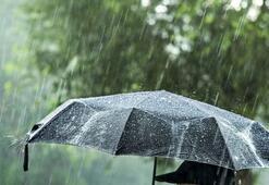Asit yağmuru nedir Asit yağmuru nedenleri