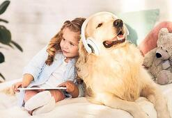 Spotify'dan köpeklere özel şarkı listesi