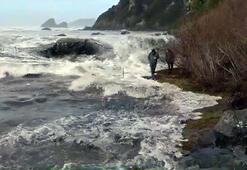 Denizi izleyen turistleri dalga vurdu