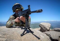 Bingölde 1 askeri şehit eden teröristlerin, Tuncelide etkisiz hale getirildiği belirlendi