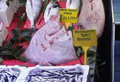 Gören şoke oluyor Bu balığı almak için bin lirayı gözden çıkarmanız lazım
