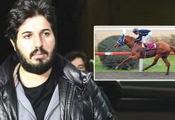 Bir zamanlar pistlerin kralıydı  Reza Zarrabın atı 'Dayım benim' şimdi bu halde