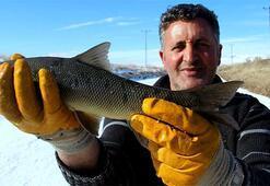Kış günlerinin vazgeçilmez aktivitesi: Eskimo usulü balık avı