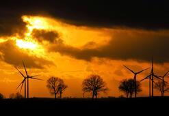 İspanyanın yeni sol hükümeti iklim değişikliği için acil durum ilan etti