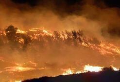 Adanada orman yangını İki farklı alanda çıktı