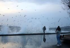 24 Ocakta hava durumu nasıl olacak İstanbula kar ne zaman yağacak