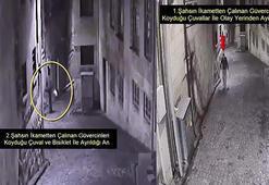 Gaziantepte motosiklet ve güvercin hırsızları yakalandı