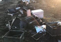30 kovan arı alev alev yandı