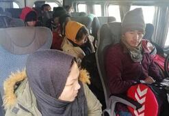 Çanakkale'de 33 göçmen yakalandı
