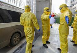 Dünyaya yayılıyor O ülkede ilk kez koronavirüs vakası görüldü