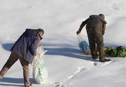 Bakanlıktan kış aylarında yaban hayatına yem takviyesi