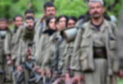 PKKlı terörist piyon olarak kullanıldıklarını anlayınca teslim olmuş