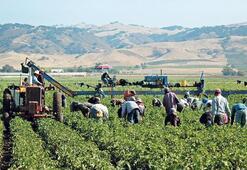 Esnaf ve çiftçiye sicil affı talebi