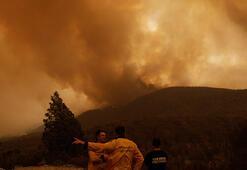 55 bin hektardan fazla alan kül oldu