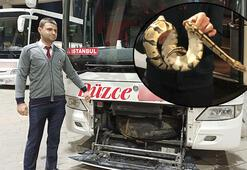 Yolcu otobüsünde valizden kaçan piton paniğe neden oldu