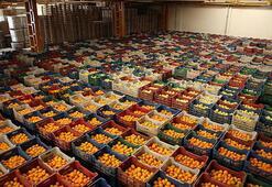 Rusya, meyve-sebze ithalatında Çin yerine Türk ürünleri alabilir