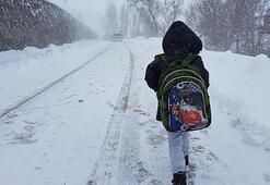 Son dakika haberi... Eğitime kar engeli Tatil edildi