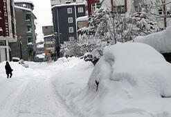 Vanda kar kalınlığı 1 metreyi aştı, 687 yerleşim yeri ulaşıma kapandı