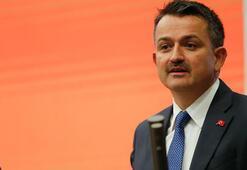 Bakan Pakdemirli açıkladı 1 milyon 130 bin tona ulaştı...