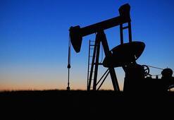 Petrolün varili 56,31 dolar